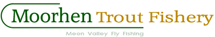 trout fly fishing for companies & charities